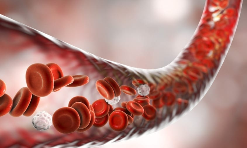 Easy Ways to Improve Your Blood Circulation